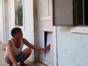 Tin tức - Lạ lùng chuyện xây nhà trọ để… nuôi gà ở Nghệ An