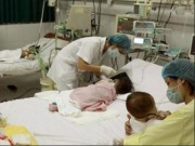 Hà Nội: 1 tuần xuất hiện 6 ca viêm não Nhật Bản