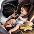 """Làm mẹ - Gừng tươi """"cứu"""" bé khỏi say xe"""