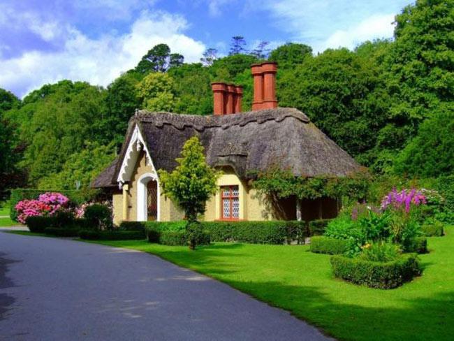 Ngôi nhà được bao quanh bởi rừng sắc màu trông thật tuyệt vời.