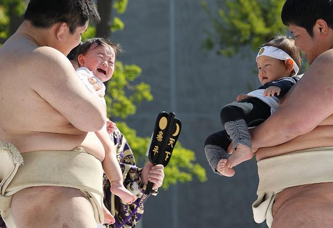 Ở Nhật Bàn hàng năm, người ta thường tổ chức lễ hội Naki Sumo - một lễ hội đặc biệt dành cho trẻ em