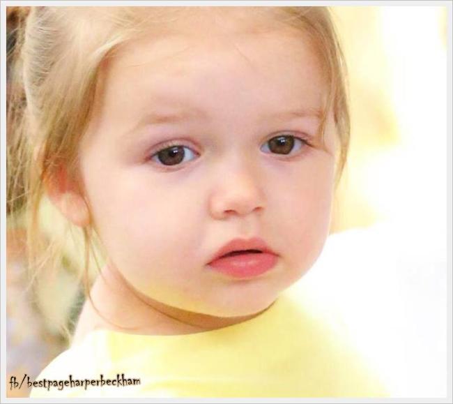 Là cô con gái duy nhất của Beck-Vic, Harper thừa hưởng các nét đẹp của cả bố và mẹ.
