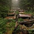 Vụ tắc đường kéo dài... 70 năm ở Bỉ