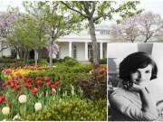 Nhà đẹp - Ngắm vườn hồng - biểu tượng một thời của vợ chồng Tổng thống Mỹ