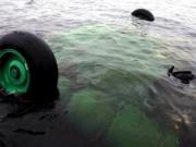Tin tức - Nga: Máy bay Mi-8 rơi, chìm xuống nước làm 6 người chết