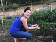 Nhà đẹp - Thanh bình khoảng vườn quê của người Việt trên đất Mỹ