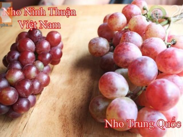 Cách phân biệt nho Trung Quốc và nho Mỹ, nho Ninh Thuận