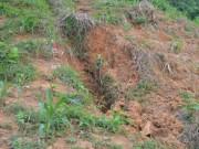 Tin tức - Chém chết con trai 5 tuổi rồi chôn xác phi tang