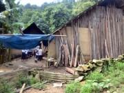 Thảm án ở Lào Cai: Xác định vụ án giết người, cướp của