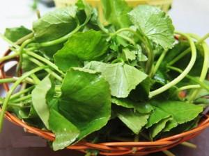 Ăn rau má giải nhiệt ngày nắng nóng nhất định phải tránh những điều sau đây