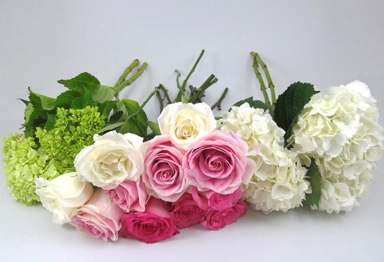 Các cô dâu có thể tiết kiệm chi phí cho đám cưới bằng cách tham khảo các thiết kế hoa cưới thịnh hành, rồi tự tay làm một bó hoa cưới thật đẹp và lôi cuốn.  Hướng dẫn sau đây bật mí cho các cô dâu trẻ cách tiết kiệm ngân sách hoàn hảo mà vẫn tạo ra được một mẫu hoa cưới tuyệt đẹp bằng cách sử dụng các loài hoa có màu sắc tươi sáng.  Chuẩn bị:  - 2 cành hoa cẩm tú cầu xanh  - 2 cành hoa cẩm tú cầu trắng  - 3 cành hoa hồng trắng  - 4 cành hoa hồng nhạt  - 4 cành hoa hồng đậm.