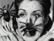 Mẹo vặt gia đình - 5 cách tự nhiên đuổi nhện ra khỏi nhà