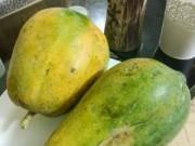 Tin trong nước - Đu đủ dùng thuốc giấm chín không độc hại
