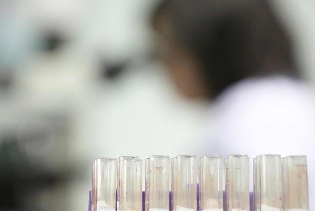 Các mẫu máu, DNA tinh dịch…cũng được sao lưu đầy đủ.