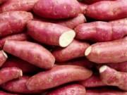 Sức khỏe - Đừng ăn khoai lang khi mắc bệnh thận!