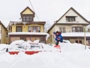 Tin quốc tế - Mỹ: Giải cứu 2 cậu bé bị chôn vùi dưới tuyết