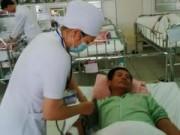 Tin tức - TT-Huế: Gần chục người nhập viện vì rắn lục đuôi đỏ cắn