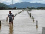 Tin tức - Bình Định: Bão số 4 gây thiệt hại hơn 50 tỉ đồng