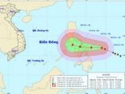 Tin trong nước - Siêu bão Hagupit giật cấp 17 áp sát biển Đông