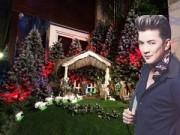 Nhà đẹp - Mr.Đàm khoe vườn Giáng Sinh lung linh huyền ảo