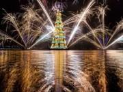 Tin tức - Những cây thông Noel ấn tượng nhất thế giới năm 2014