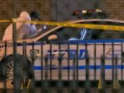 Tin tức - Hai cảnh sát Mỹ bị phục kích, bắn chết giữa phố