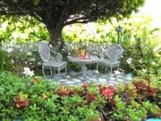Nhà đẹp - Hút mắt vườn tí hon trong mơ chỉ rộng 2.5cm