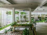 Nhà đẹp - HN: Biệt thự xanh từ ngoài vào trong khiến báo Tây mê đắm