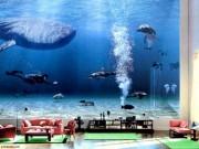 Nhà đẹp - Ảnh hiếm về biệt thự triệu đô nuôi cả cá mập của Bill Gates