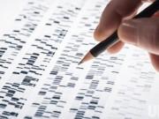 Nhìn lại 10 phát hiện khoa học vĩ đại trong năm 2015
