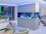 Nhà đẹp - Bể cá kị đặt dưới bàn thờ, trong phòng ngủ