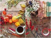 """Nhà đẹp - Rung động những bàn """"trà hoa nữ"""" đẹp nhất xứ sở sương mù"""