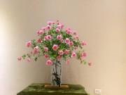 Nhà đẹp - Học cách cắm bình hồng 60 bông kiểu