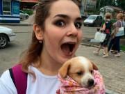 Tin tức - Thiếu nữ xinh đẹp tra tấn chó mèo rồi đăng lên Facebook câu like
