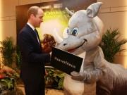 Làng sao - Hoàng tử William dễ thương bắt tay tê giác trong sự kiện ở Việt Nam