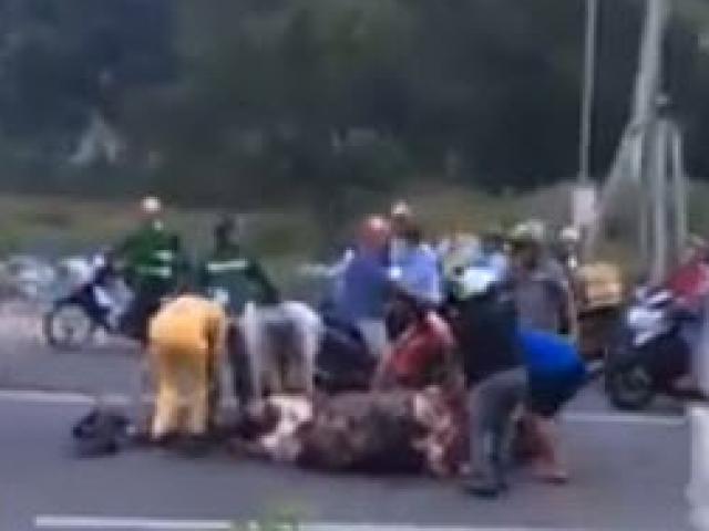 Ngán ngẩm chuyện hôi của: trâu bị tai nạn chết giữa đường, dân xúm vào xẻ thịt mang về nhà