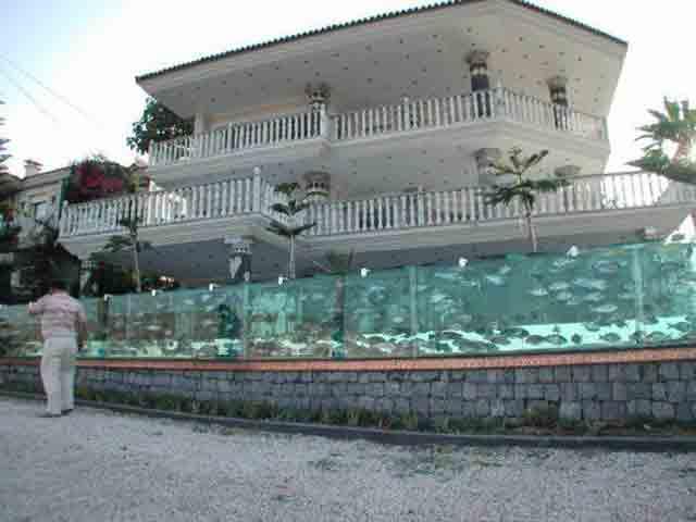 Thay hàng rào sắt thành bể cá dài 50m, người đàn ông không ngờ ngôi nhà lại trở nên như vậy
