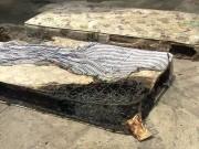 Tin tức - Mẹ chồng bị tố phóng hỏa đốt 2 con riêng của con dâu nhưng được xử trắng án