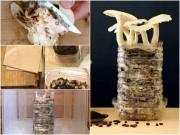 Nhà đẹp - 3 cách trồng nấm cực đơn giản, 5-10 ngày là có thể ăn ngon lành