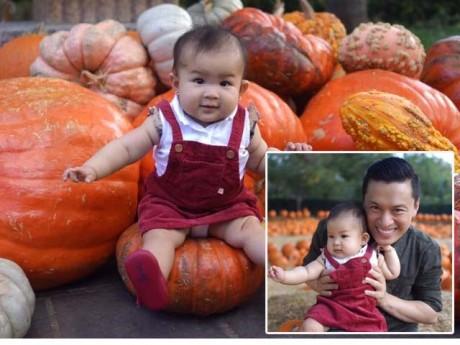 Sao Việt 24h: Con gái Lam Trường cực yêu giữa vườn bí ngô khổng lồ ở Mỹ