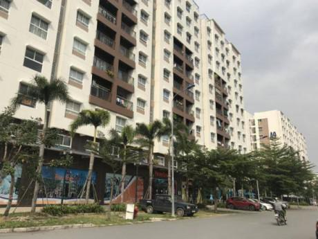 Tranh cãi gay gắt vụ nuôi chó, mèo ở chung cư Sài Gòn