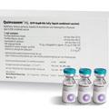 Tin tức - WHO khẳng định vắc xin 5 trong 1 Quivaxem an toàn