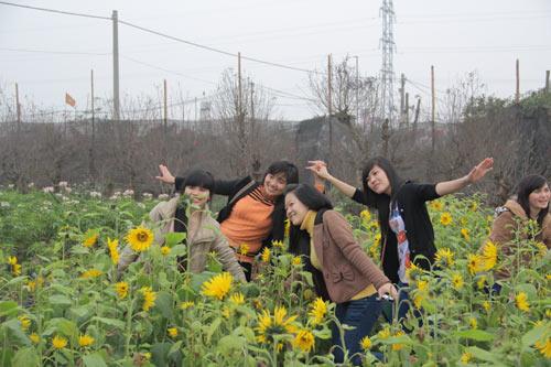 Vườn hoa Bách Nhật hút khách ngày xuân-1