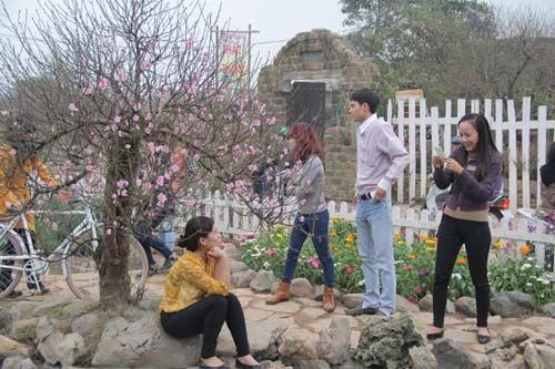 Vườn hoa Bách Nhật hút khách ngày xuân-3