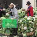 Giá cả thực phẩm chợ Tân Bình 25-1