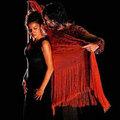 Xem & Đọc - Đắm mình trong vũ khúc flamenco ở Jerez