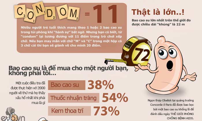 infographic: bao cao su dai toi...22m? - 3