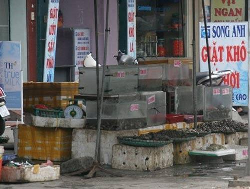 Những con phố bốc mùi nổi tiếng ở HN-5