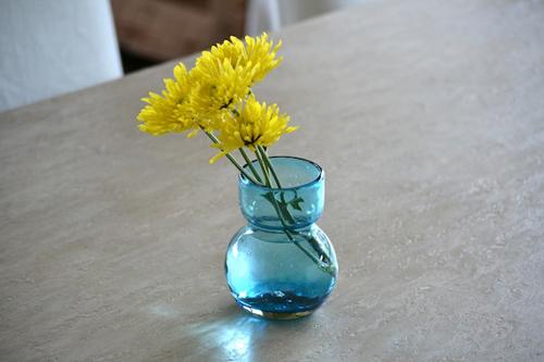 cam hoa cuc trang tri ban an cuoi tuan - 5