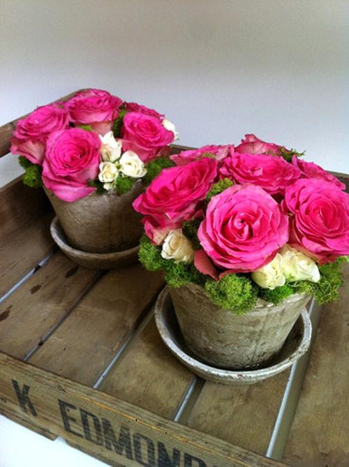 y tuong cam hoa de ban dep lung linh - 10